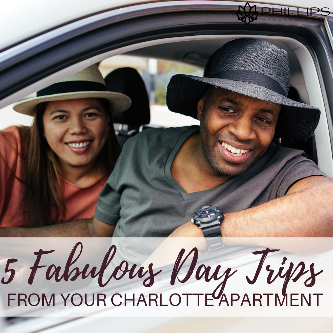 5 Fabulous Day Trips from Your Charlotte Apartment | Phillips Mallard Creek