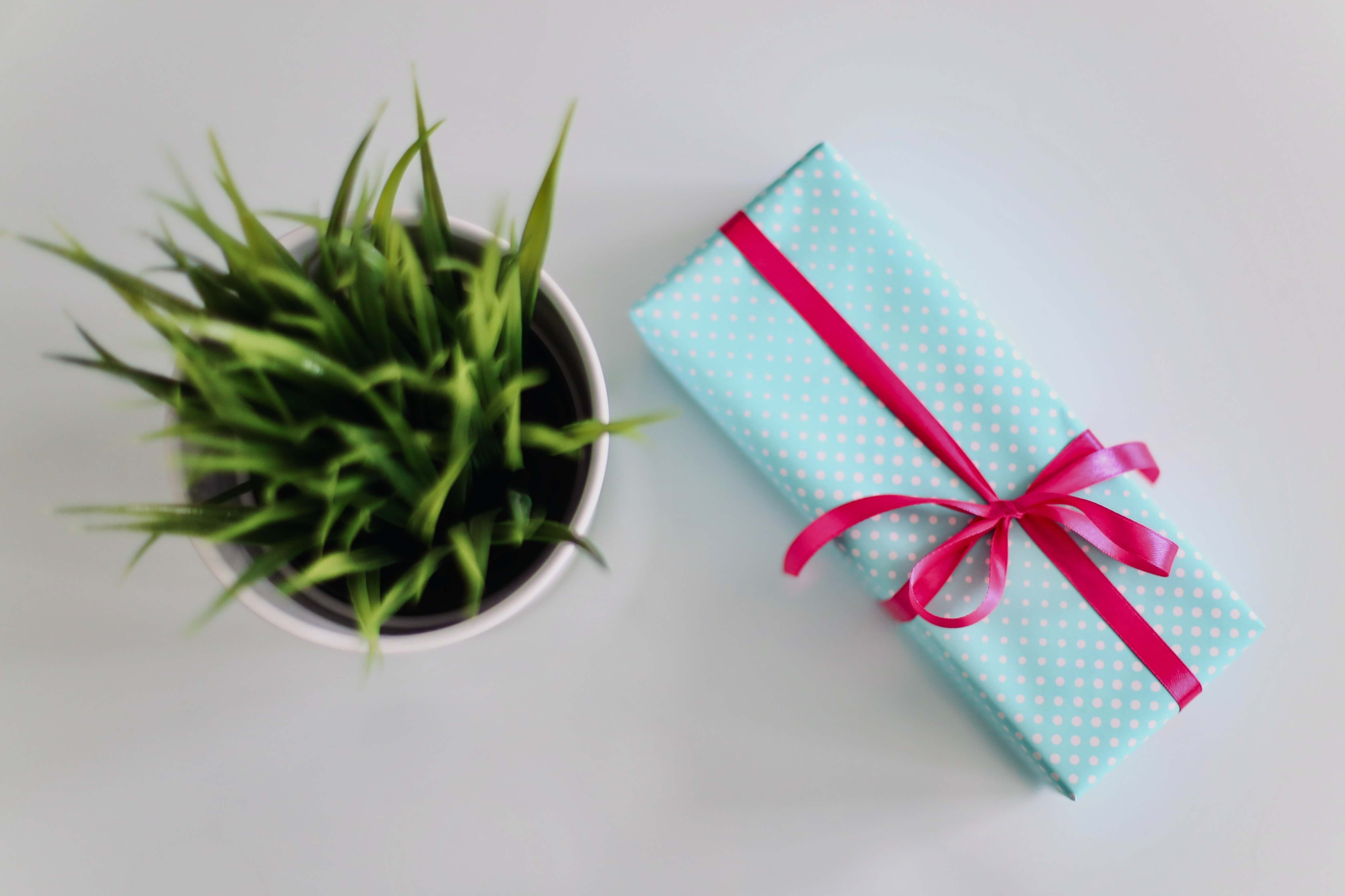 giving gifts to friends