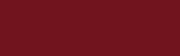 Elivate Color Logo