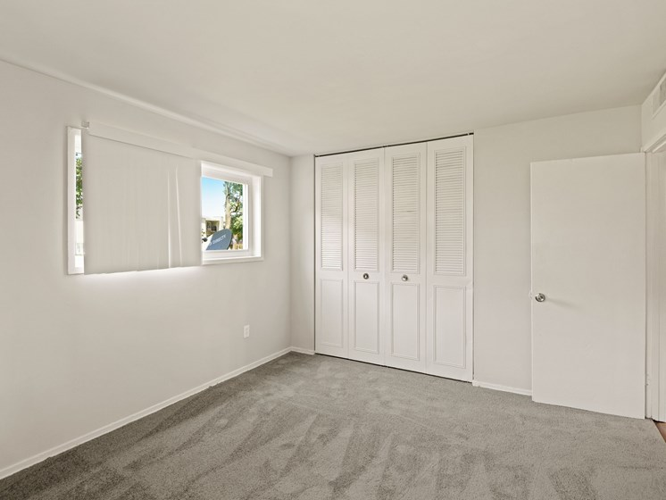 Carpeted room with large closet and window