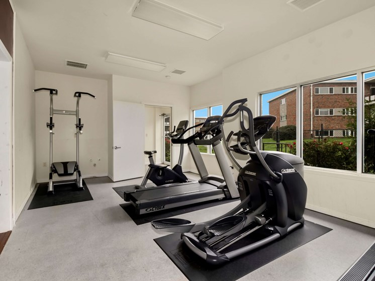 Two ellipticals in the fitness center