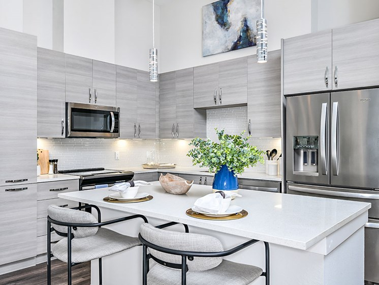 Upscale Stainless Steel Kitchen Appliances With Double Door Refrigerator at Axio at Carillon, Saint Petersburg, FL