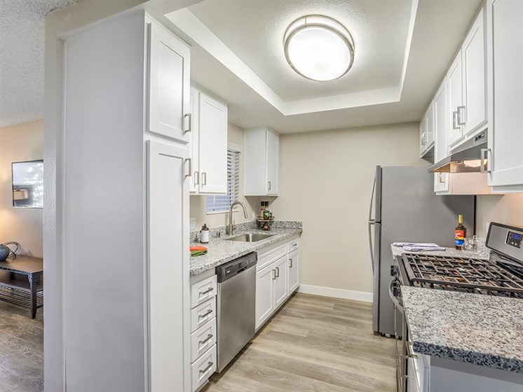 Efficient Appliances In Kitchen at The Ashton, California