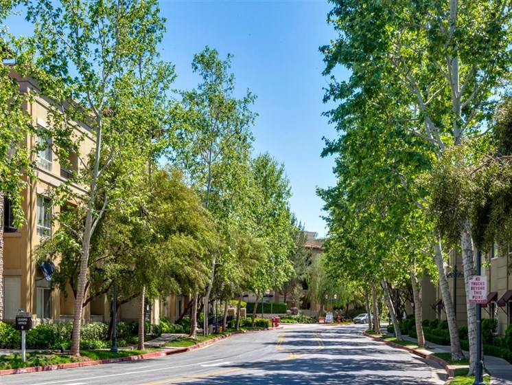 Meandering Pathway at The Madison at Town Center, Valencia, 91355