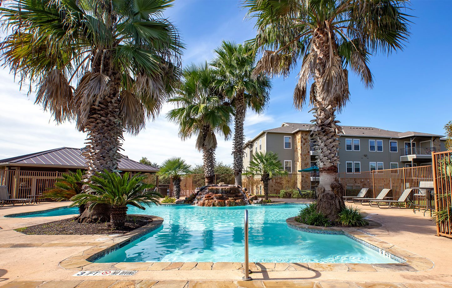 exterior pool with palm trees