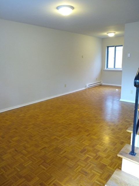 apartments now leasing for rent charlotte nc pet friendly renovated