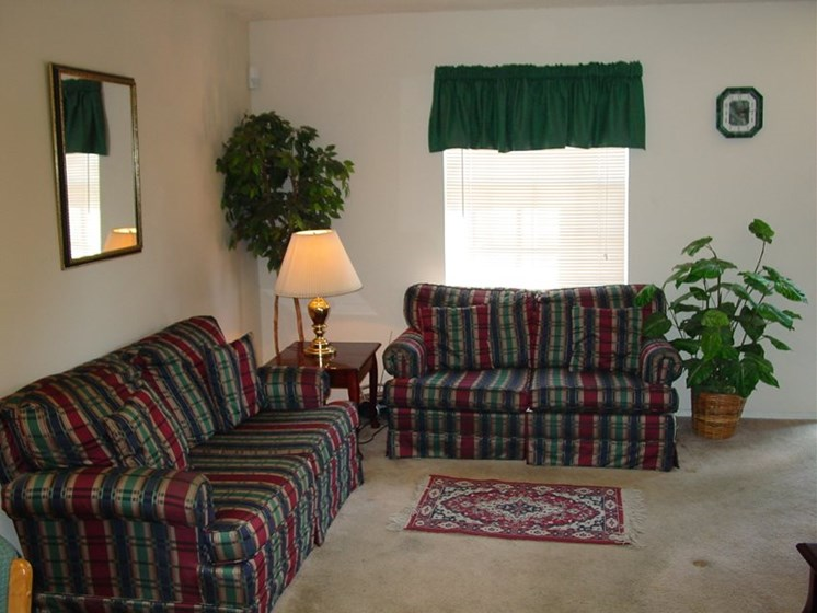 Living room with sofa, loveseat, end table, lamp and plants