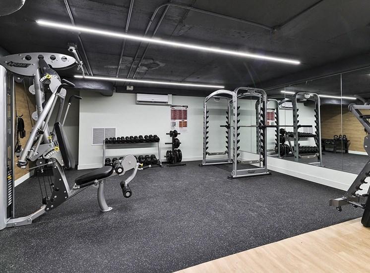 Gym fitness at Hill Park, Quebec, H3V 1G1