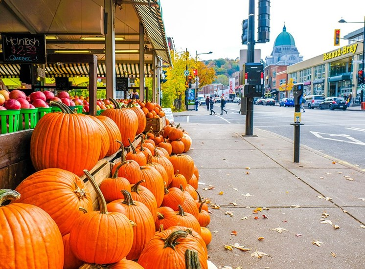 Market nearby at Hill Park, Montreal, Quebec