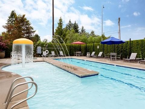 Enjoy the Sparkling Pool!
