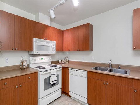 Lots of Counter and Cabinet Space