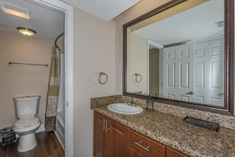 Bloomingdale Woods Apartments Valrico Florida Model Apartment Bathroom with Sink, Toilet, and Shower/Bath Combo