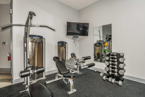 Bloomingdale Woods Apartments Valrico Florida Fitness Center Weight Machines and Free Weights with TV