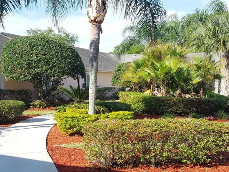 Courtyard Garden Space at Savannah Court of Brandon, Brandon, FL