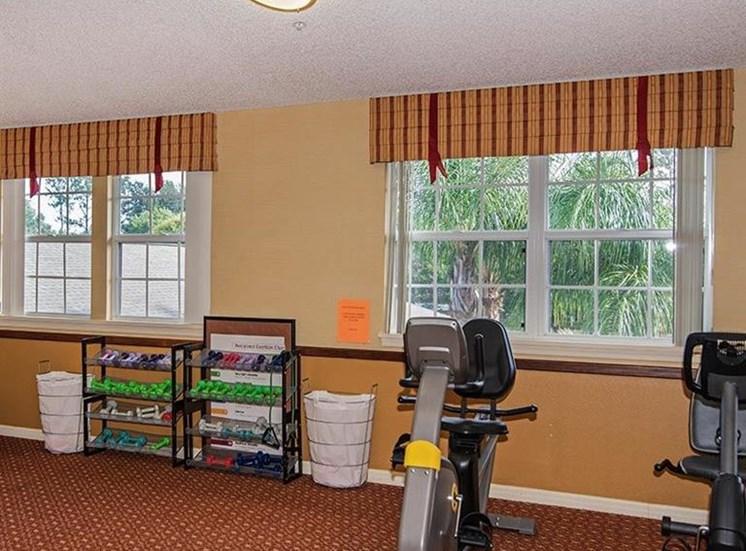 Cardio Machines In Gym at Sun City Senior Living, Ruskin, 33572
