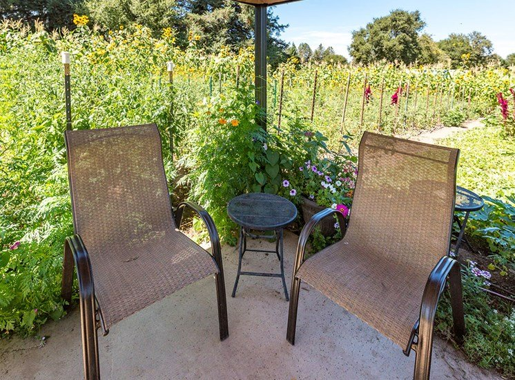 Garden Sitting Area at Healdsburg, A Pacifica Senior Living Community, Healdsburg, California