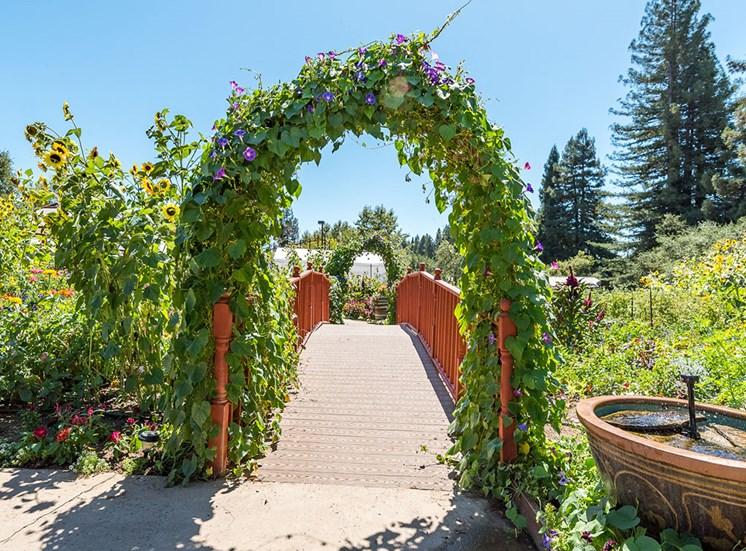 Beautiful Garden Setting at Healdsburg, A Pacifica Senior Living Community, Healdsburg