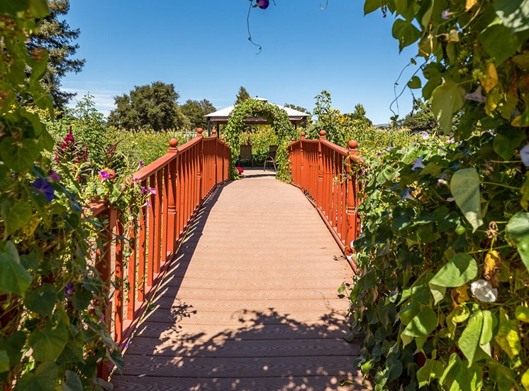 Wooden Bridge In Garden at Healdsburg, A Pacifica Senior Living Community, California