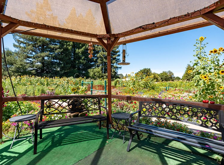 Shaded Sitting Area To Enjoy A Sunny Day Out at Healdsburg, A Pacifica Senior Living Community, Healdsburg, CA, 95448