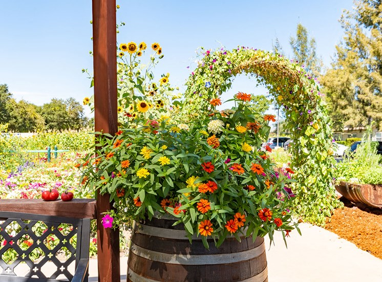 AttractiveGardenat Healdsburg, A Pacifica Senior Living Community, Healdsburg, CA