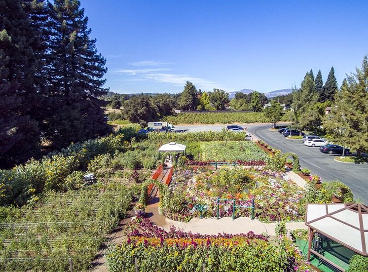 Expansive Garden at Healdsburg, A Pacifica Senior Living Community, California, 95448