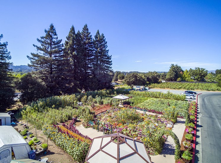 Ariel View Of Garden at Healdsburg, A Pacifica Senior Living Community, Healdsburg, CA, 95448