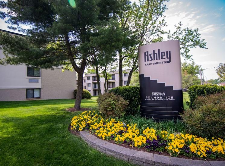 Ashley Apartments Main Signage Photo 2
