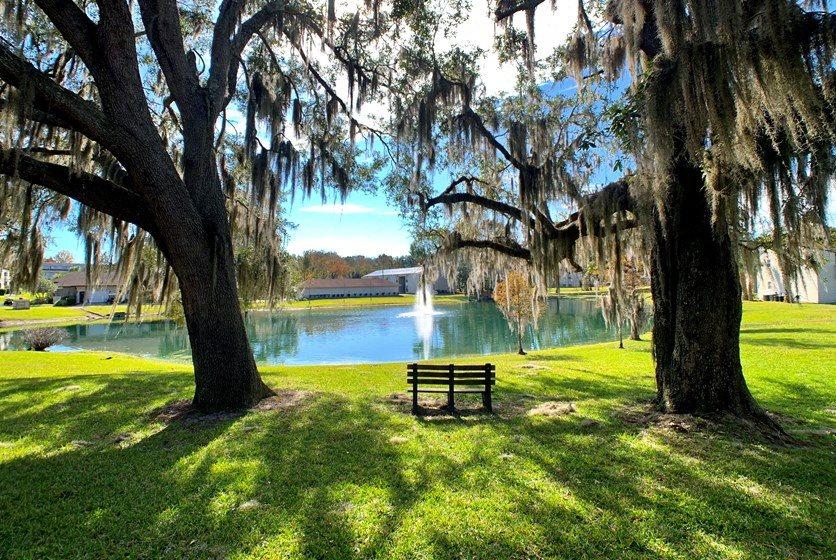 Tranquil Park Like Setting,Exterior