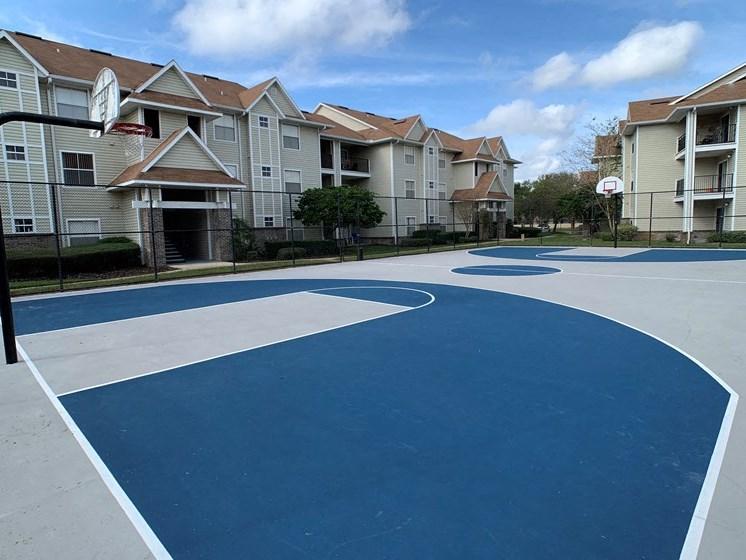 Full Size Basketball Court