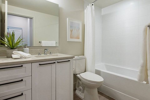 Inlet Glen Apartments in Port Moody, BC bathroom with upgraded cabinetry