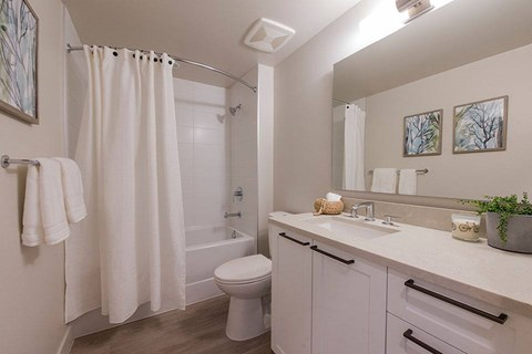 Inlet Glen Apartments in Port Moody, BC bathroom with condo style finishes