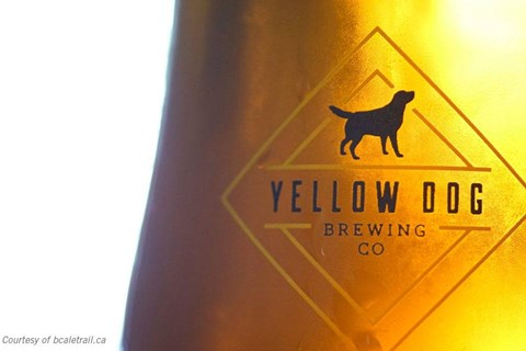 Yellow Dog Brewing in Port Moody, BC
