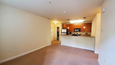 Manayunk One Bedroom Apartments