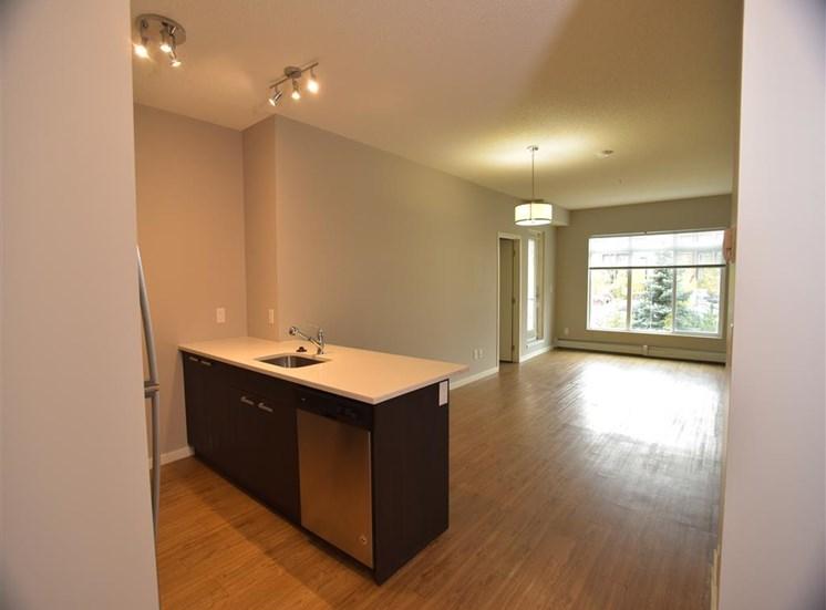aura residential rental apartments bright modern design