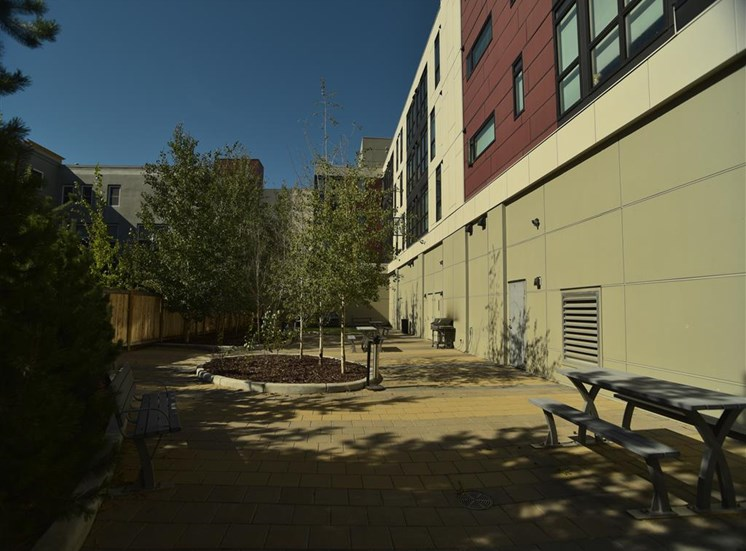 Mission 17 residential rental apartments pet area