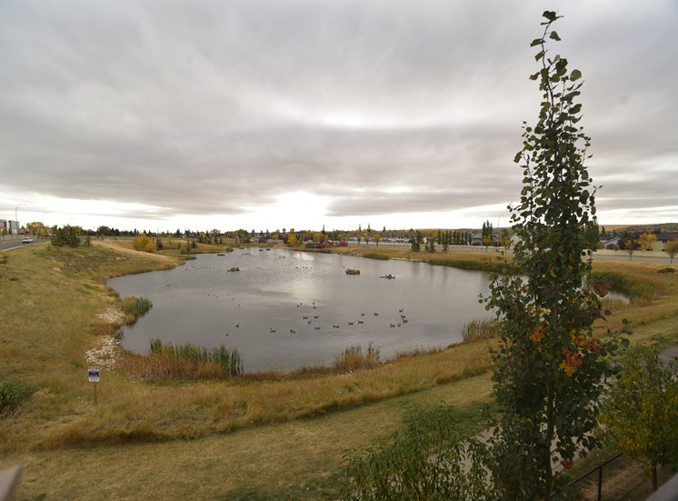 Aqua residential rental apartments next to pond and walking paths
