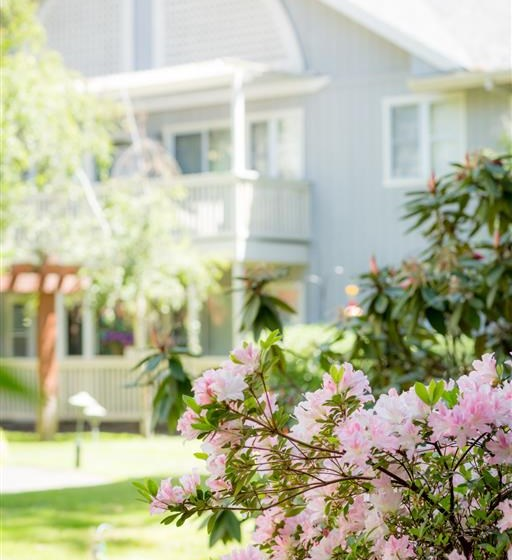 Beautiful Garden at Cogir of Rohnert Park, Rohnert Park, CA