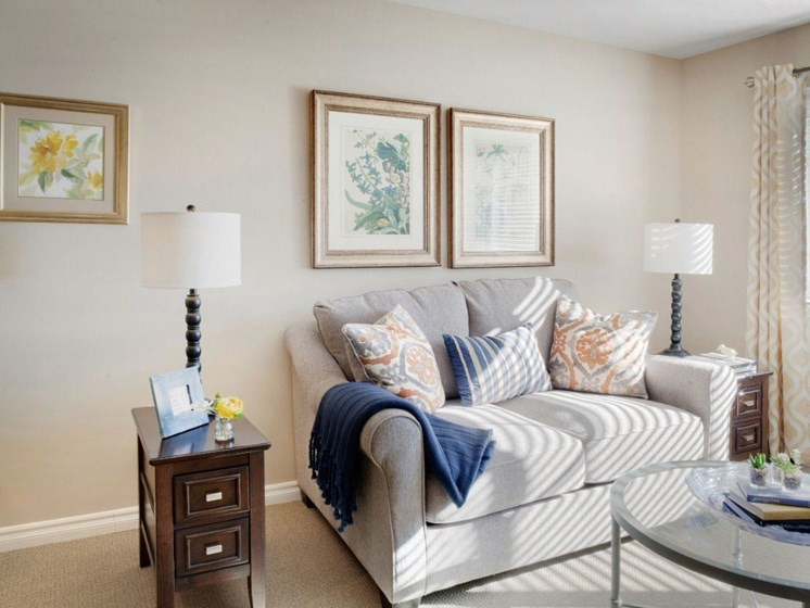 Relaxing Sofa In Living Room at Cogir On Napa Road, California