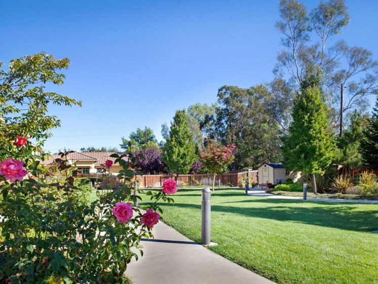 Lush Courtyards With Plantation at Cogir On Napa Road, California, 95476