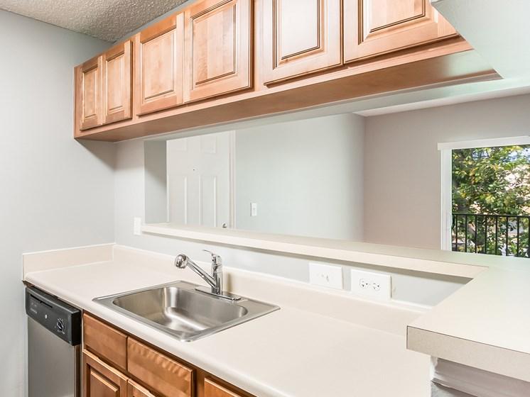 Prospect Park Model Kitchen