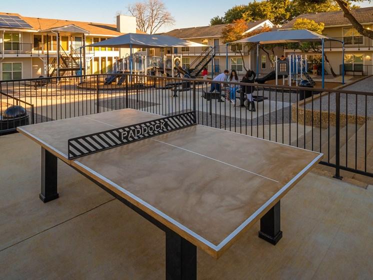 Paddock Ping Pong
