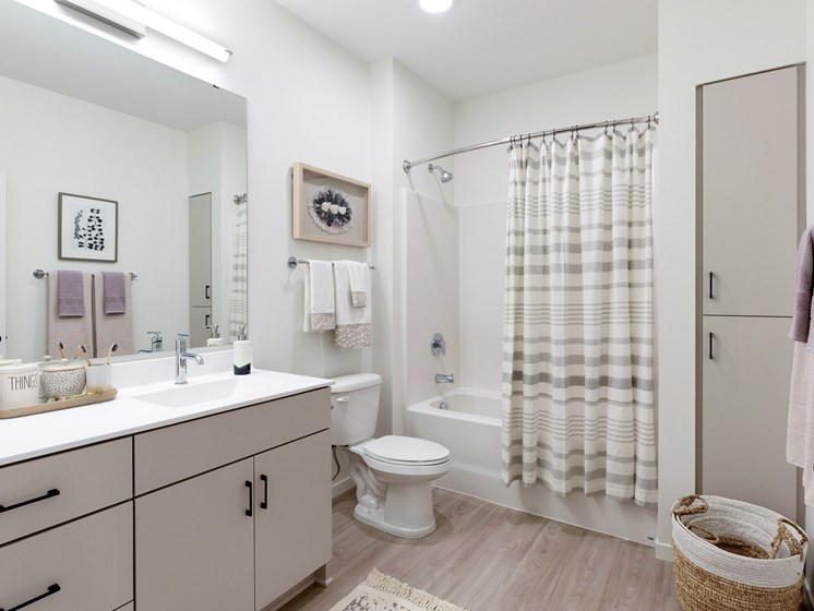 Master Bathroom With Large Vanity Area at The Hill Apartments in St Paul, MN