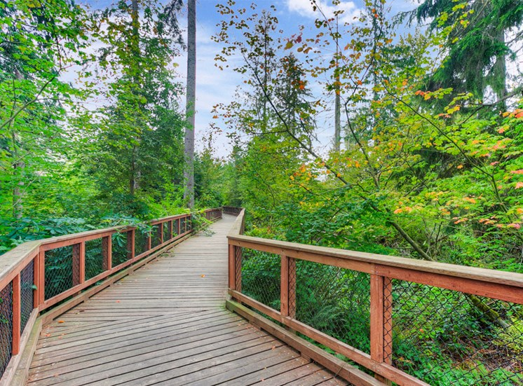 community-naturewalk1100x700