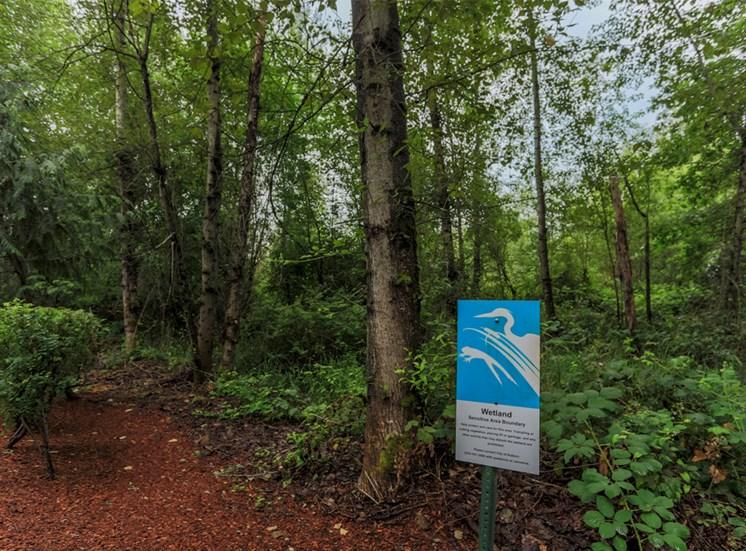 Wetlands Nearby