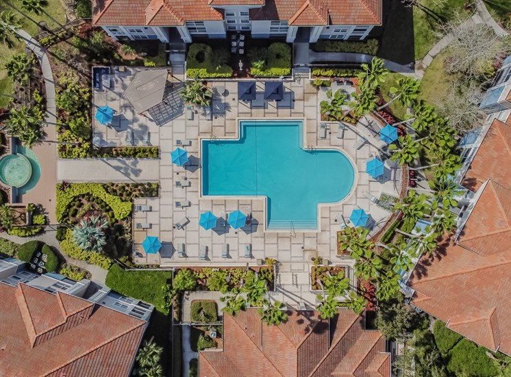 Drone Pool View at The Boot Ranch Apartments, Palm Harbor, 34685