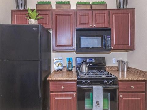Sonata Black Appliances in Nevada Rental Homes