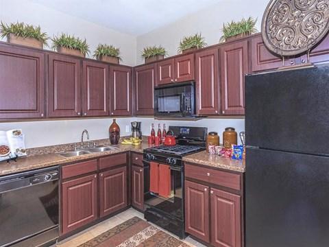 Efficient Appliances In Sonata Kitchen in North Las Vegas Apartment Rentals for Rent