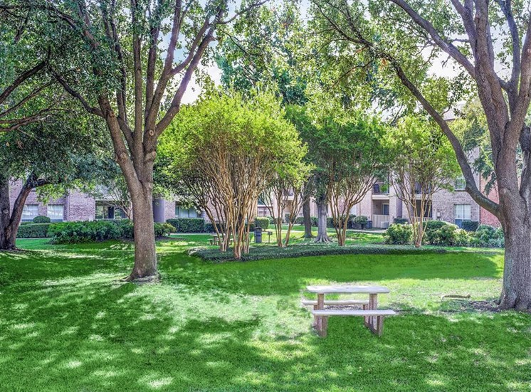 Mature landscaping at Trinity Square Apartments in North Dallas, TX, For Rent. Now leasing 1 and 2 bedroom apartments.