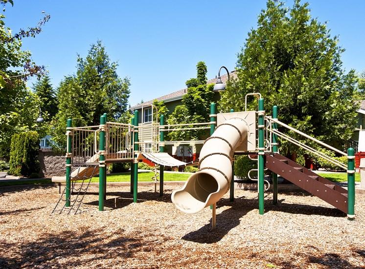 Green Leaf_Playground