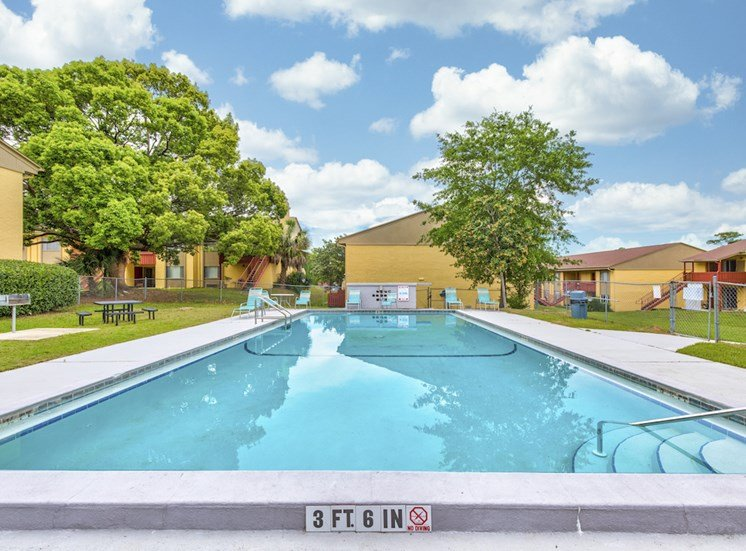 beautiful swimming pool and sundeck surrounded by lush trees at Reserve at Midtown Apartments, Tallahassee, FL, 32303